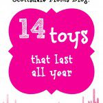 Contributor Corner | Holiday Gift Guide | 14 Toys That Last All Year