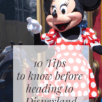 10 Tips To Know Before Heading To Disneyland