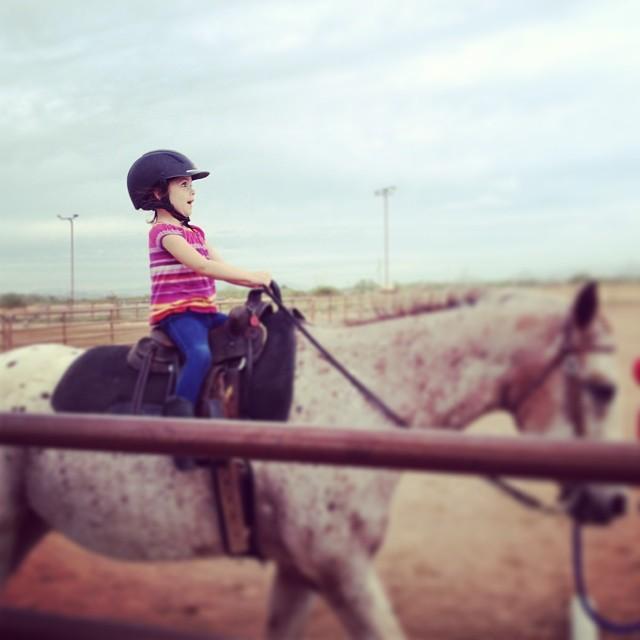 horse_reagan