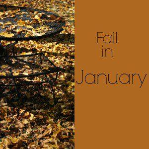 Fall in January