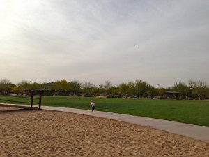 pic6 open spaces park time
