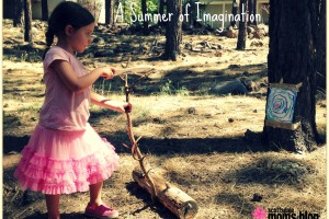 SummerofImagination
