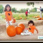 fall pic 3 edit copy
