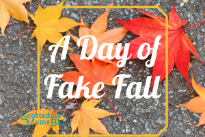 A Day of Fake Fall