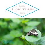 The Butterfly Wonderland {Playdate Series}