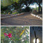Hilton Tucson El Conquistador {staycation deals}