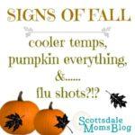 Cooler temps, everything pumpkin &……flu shots?!?