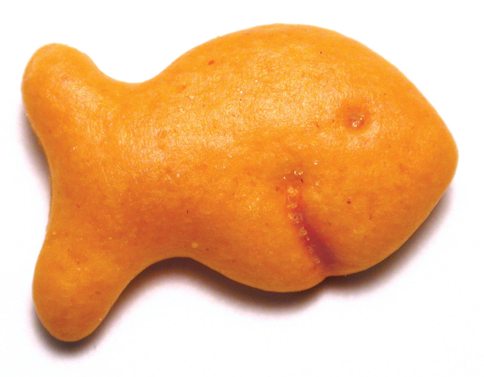 Image result for goldfish cracker