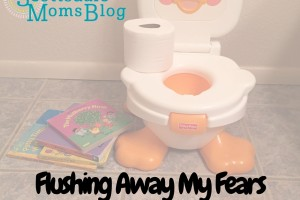 Flushing Away My Fears