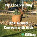 5 tips on visiting the Grand Canyon with kids
