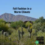 Fall Fashion in a Warm Climate