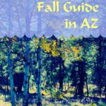 SMB Fall Guide in AZ ~ FREE Download!