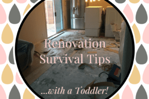 Renovation Survival Tips