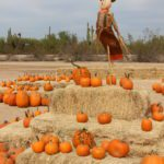5 Fun Fall Events in October