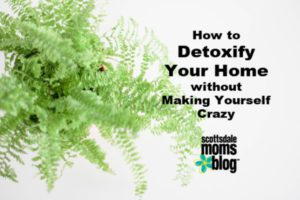 detox your house