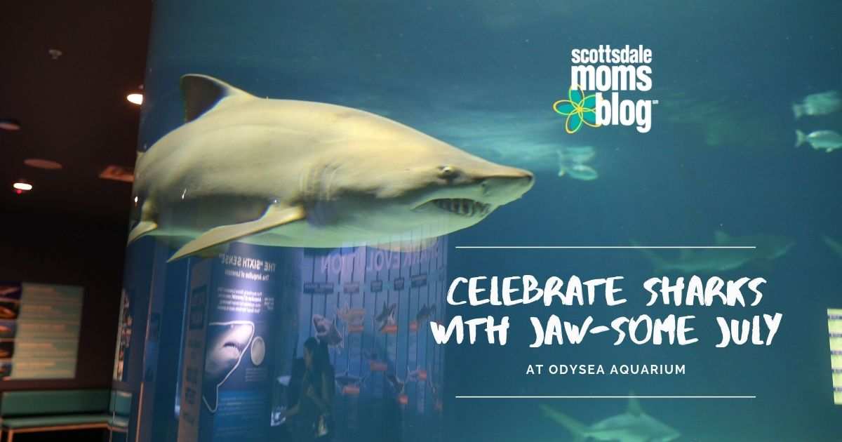 celebrate sharks with jaw-some July
