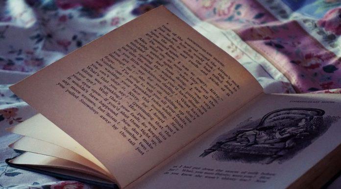 bedtime books